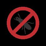 dd-insetos-descupinizacao